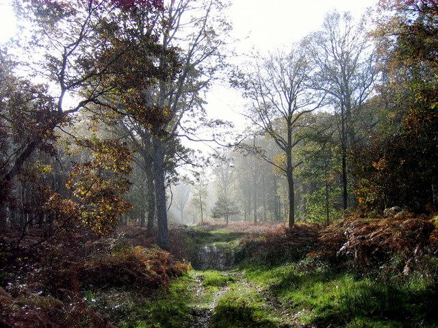 nature reserve 2
